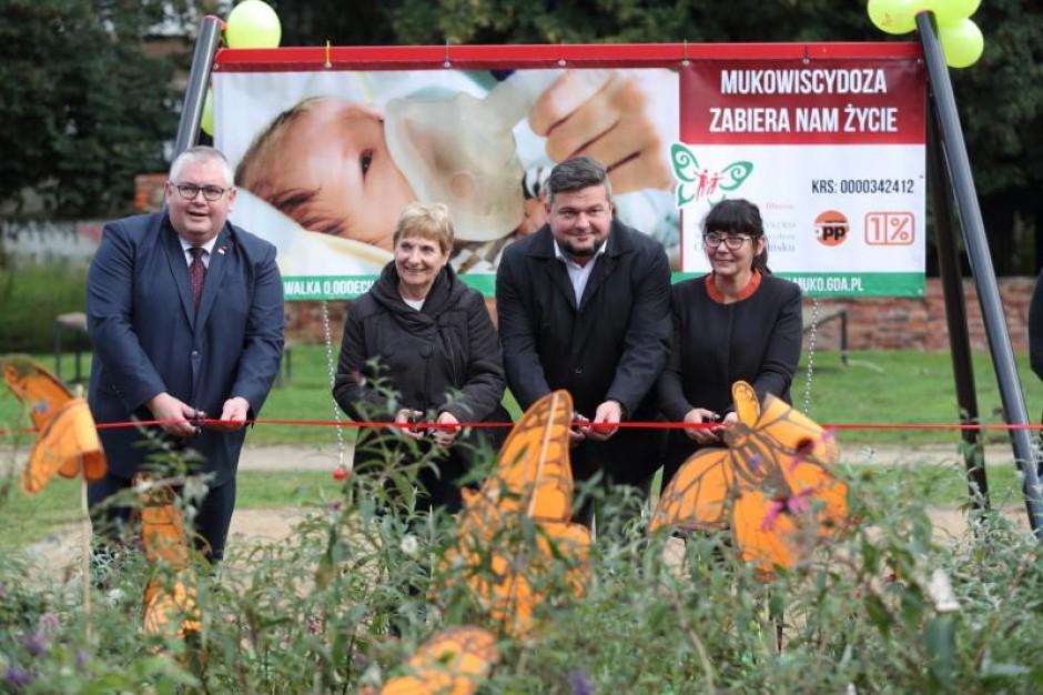 W Gdańsku stworzyli oazę dla motyli. Cel nie taki oczywisty