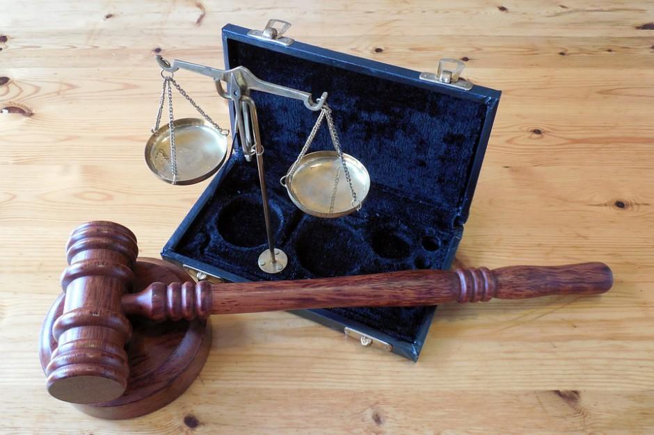 Afera dębowa: Trzech mężczyzn zasiadło na ławie oskarżonych