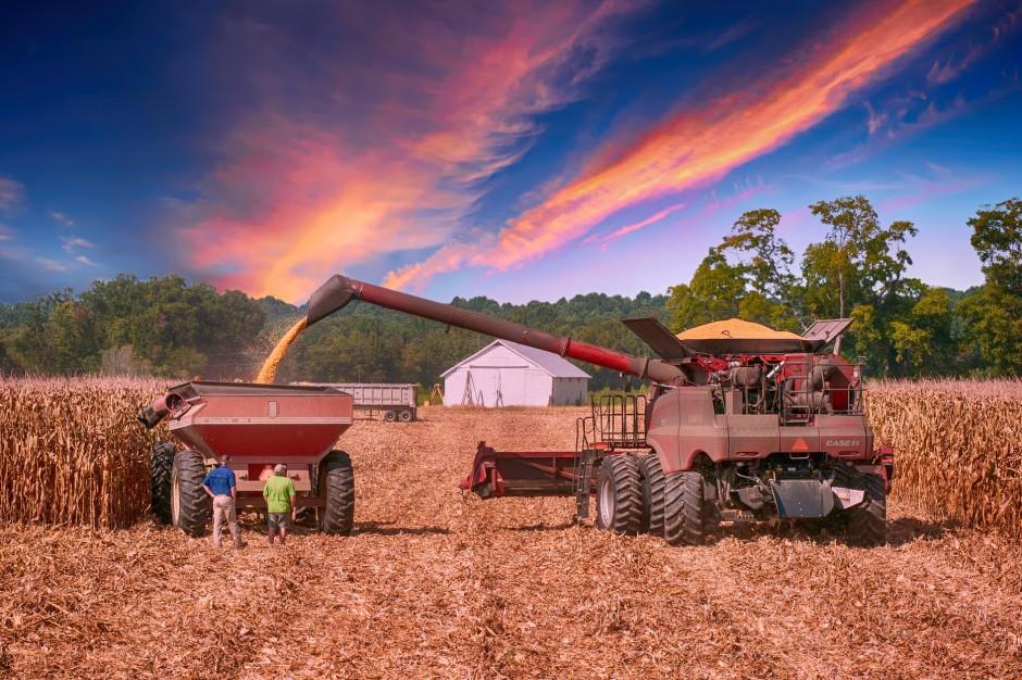 Zadłużenie mieszkańców wsi: Gdzie najwięcej zadłużonych rolników?