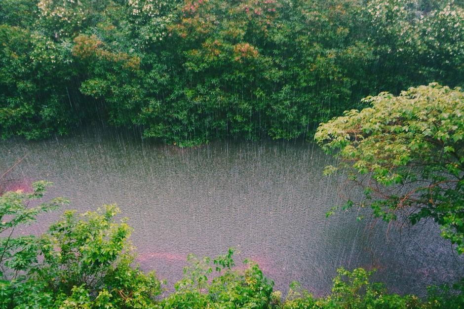 Ulewy, Śląsk: Zalane budynki i przekroczone stany alarmowe rzek po opadach deszczu