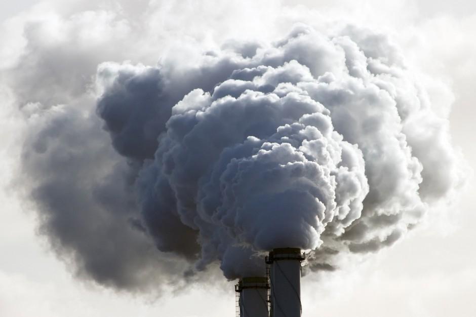 Jadwiga Emilewicz: Choroby powodowane smogiem kosztują nas rocznie 60 mln zł