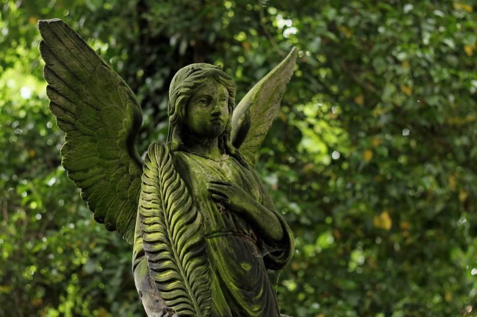 Ustawa o cmentarzach, zmiany: Ogrody pamięci zamiast cmentarza