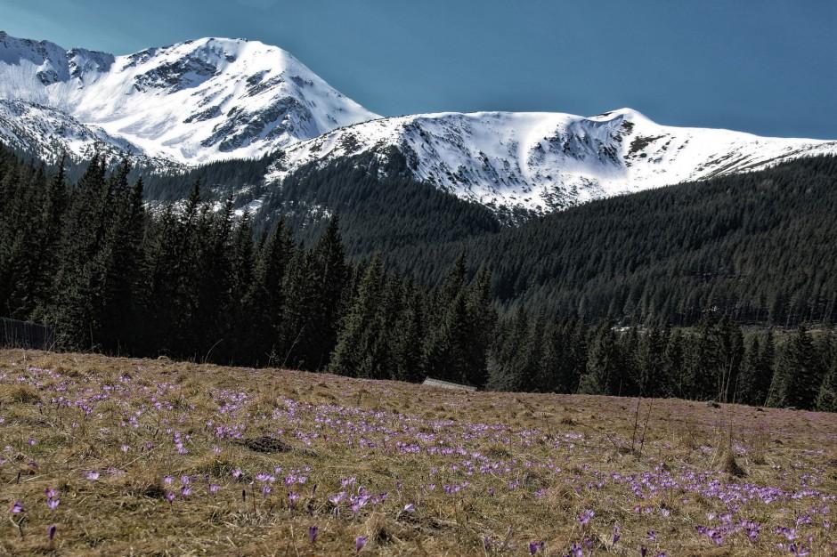 Zima w Tatrach. Spadł śnieg - warunki dla turystów niekorzystne