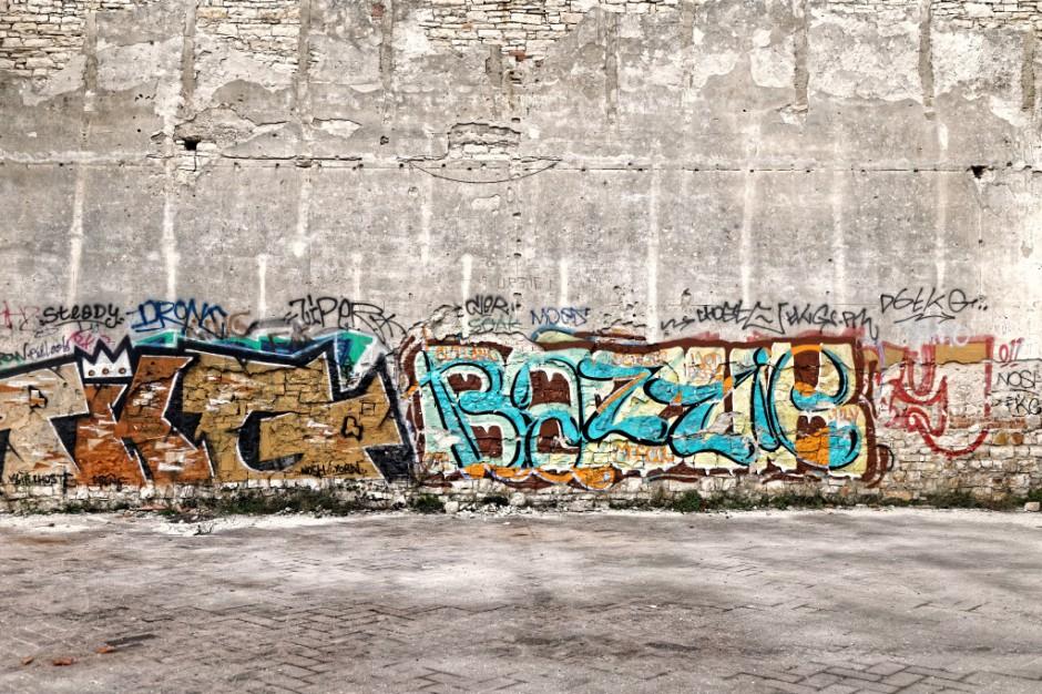 Częstochowa muralami walczy z nielegalnym graffiti