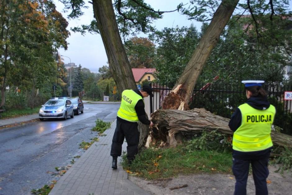 """Szef MSWiA podpisał wnioski o wypłatę zasiłków dla po szkodowych przez orkan """"Ksawery"""""""