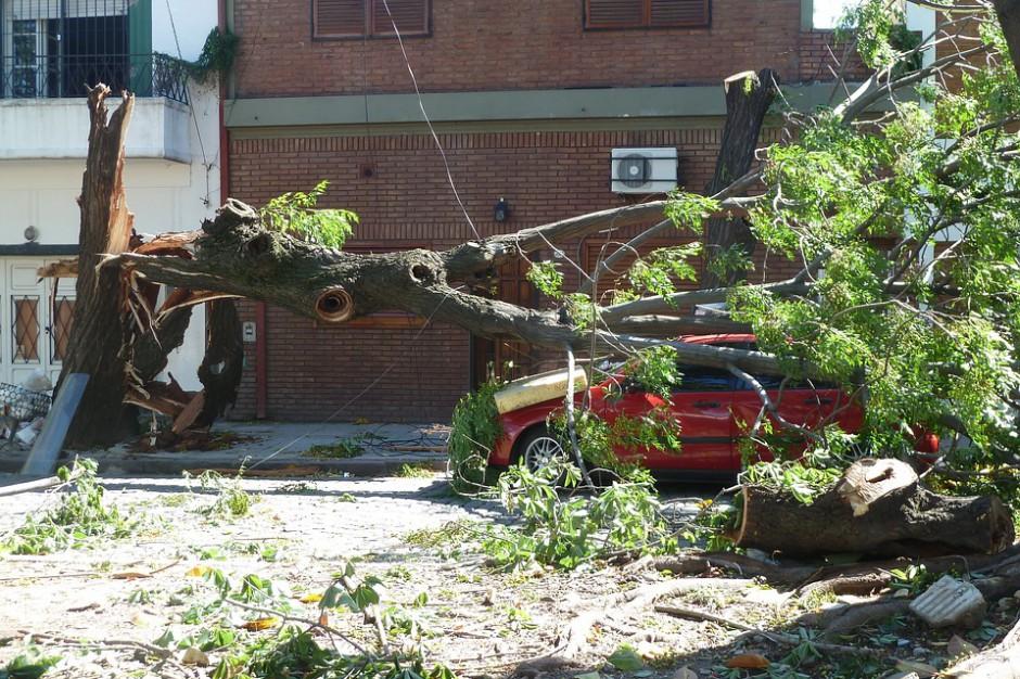 Wojewoda wielkopolski wnioskuje o kolejne środki dla poszkodowanych podczas orkanu