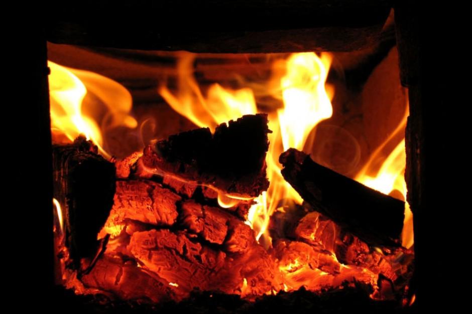 Kraków pozbędzie się w tym roku 8 tys. palenisk węglowych
