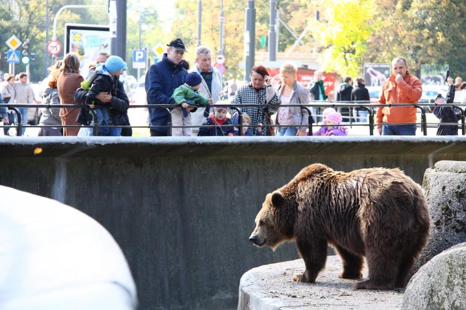 Warszawskie zoo ogłasza zbiórkę zabawek dla zwierząt