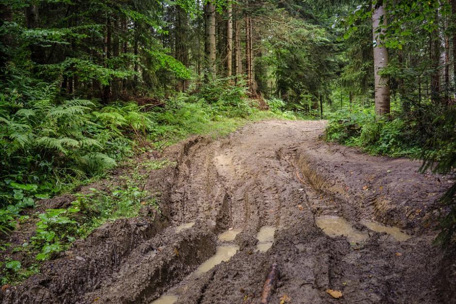 """Kilkaset osób sprzątało górskie szlaki w ramach akcji """"Czyste Beskidy"""""""