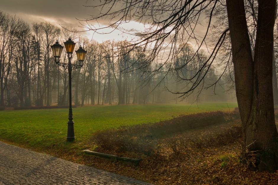 Wichura nie oszczędziła zabytkowego parku w Żywcu