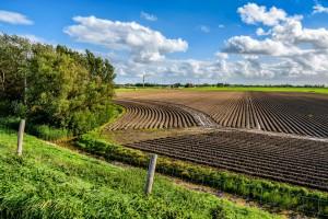 418 mln zł zaliczek na kontach rolników - to pierwszy dzień wypłat