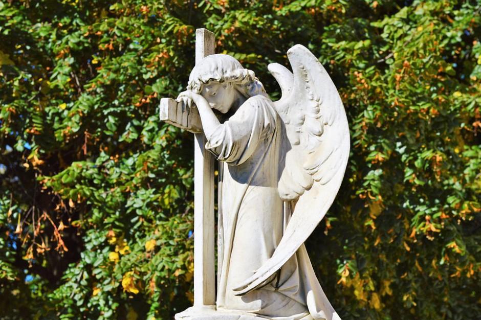 Szczecin: Kilkuset wolontariuszy będzie kwestowało na cmentarzach