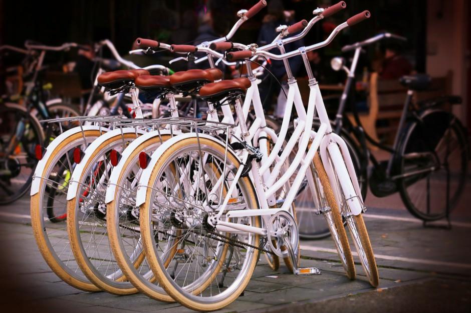 W Płocku powstanie magistrala rowerowa. Miasto uruchomi też system ich wypożyczania