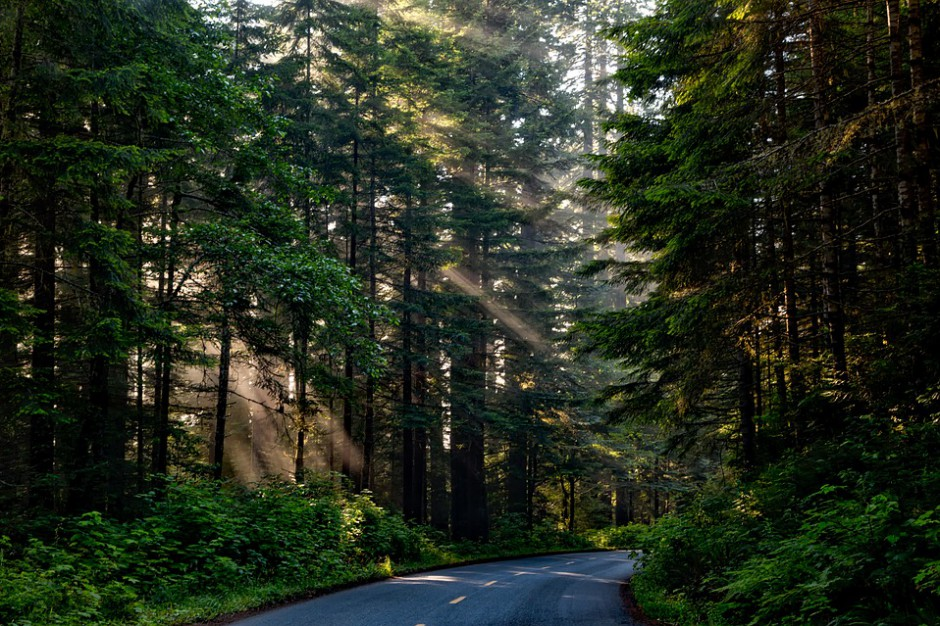 Rezerwa subwencji ogólnej 2016: Podział na drogi samorządowe na rok 2016