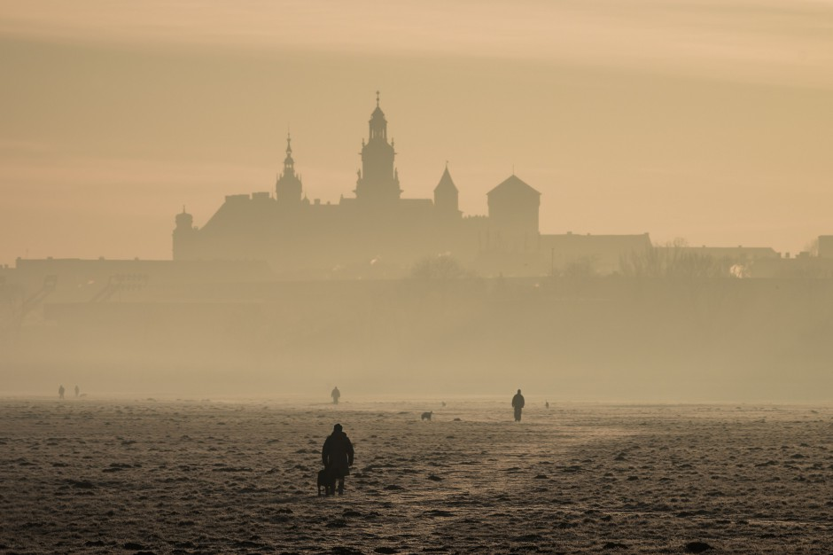 Kraków sam ze smogiem nie wygra
