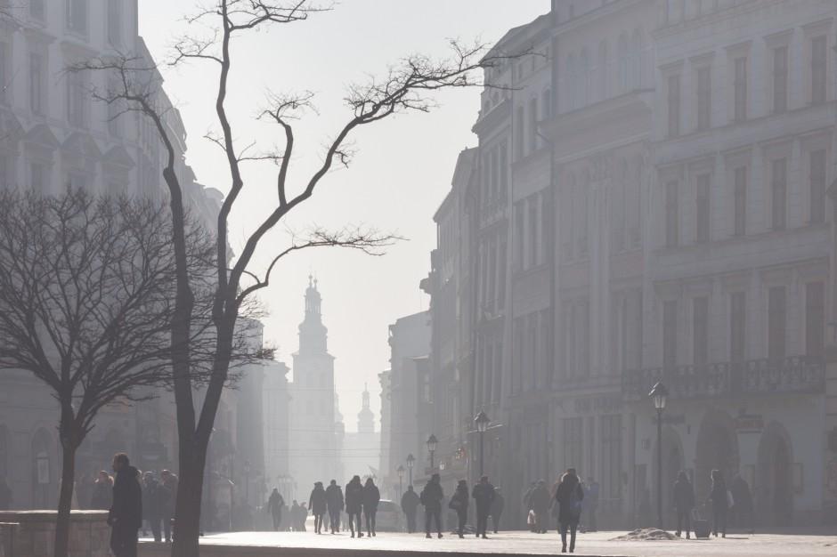 Zakaz używania węgla do ogrzewania w Krakowie od 1 września 2019 r.