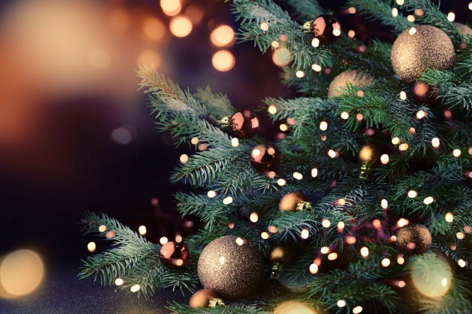 Bytom, święta: Rusza bożonarodzeniowa zbiórka żywności dla seniorów z Kresów