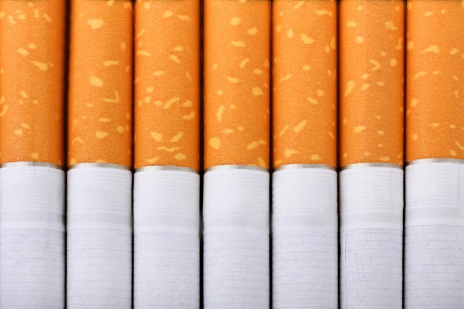 Przemyt papierosów i tytoniu przechwycony w województwie lubuskim