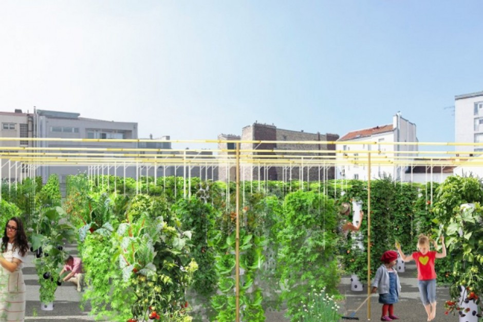 Paryż ma cel: dodatkowe 100 hektarów zieleni w mieście