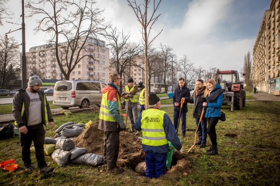 """Warszawa: Akcja """"Milion drzew"""" zakończona. Wiemy, gdzie zostaną zasadzone drzewa"""