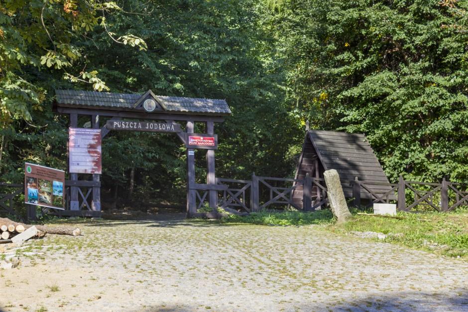Niemal 29 mln zł z UE na projekty kulturowe w Górach Świętokrzyskich