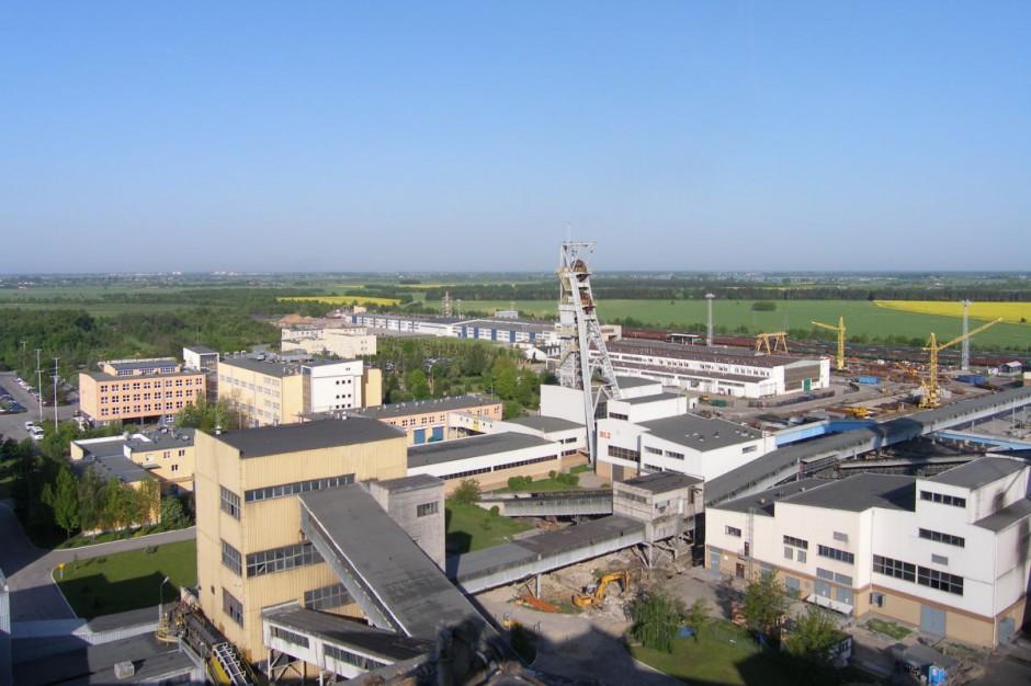 Kopalnia Bogdanka zatrudni ponad 300 nowych pracowników