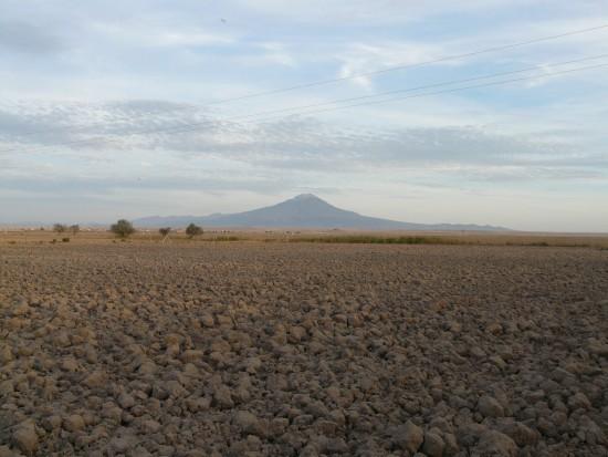 Jest plan ograniczenia odpływu azotanów do gleby