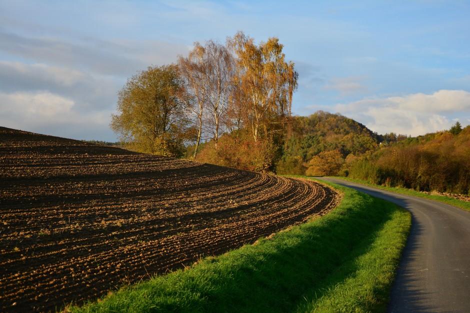 Kupno i sprzedaż gruntów będą łatwiejsze