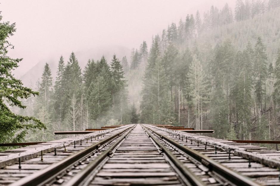 Śląsk: Brak prądu i utrudnienia na kolei przez silny wiatr