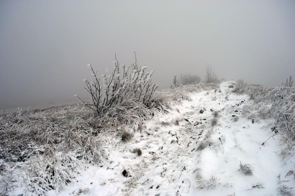Uwaga kierowcy, rano gęsta mgła w ośmiu województwach