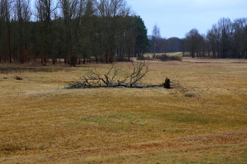 Małopolskie: Huraganowy wiatr przybiera na sile
