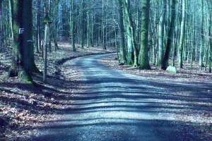 78 km szlaków turystycznych zostanie zmodernizowanych