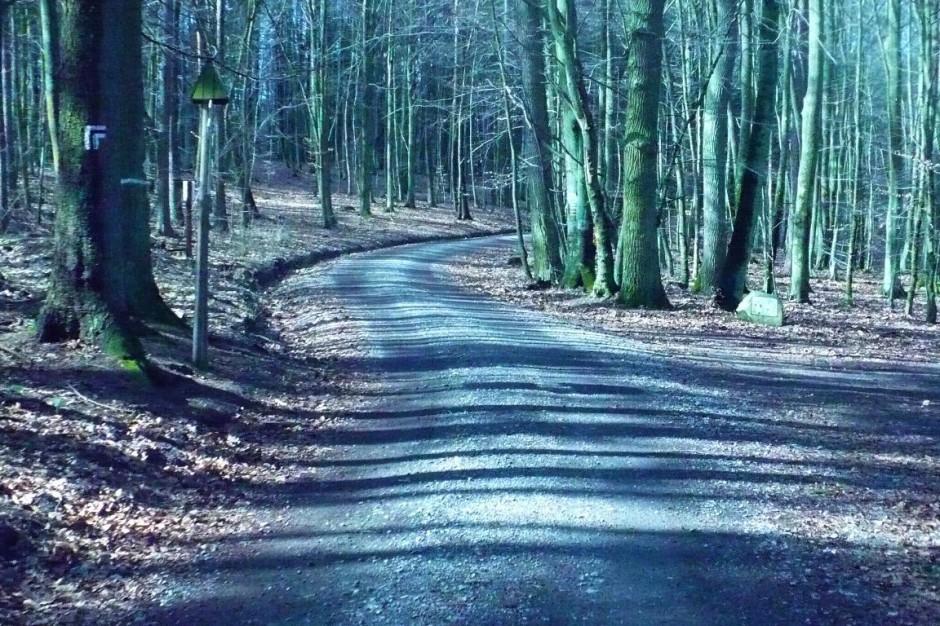 Gdańsk, Gdynia i Sopot: 78 km szlaków turystycznych zostanie zmodernizowanych