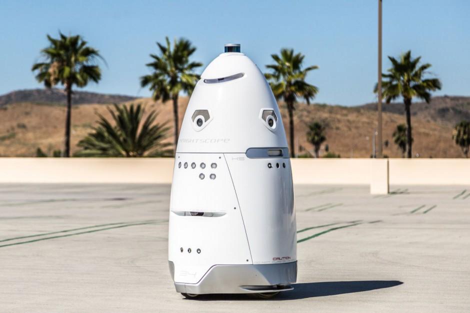 Schronisko dla zwierząt zatrudniło robota do ochrony przed bezdomnymi