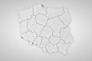 JOW-y w wyborach do rad gmin zostają