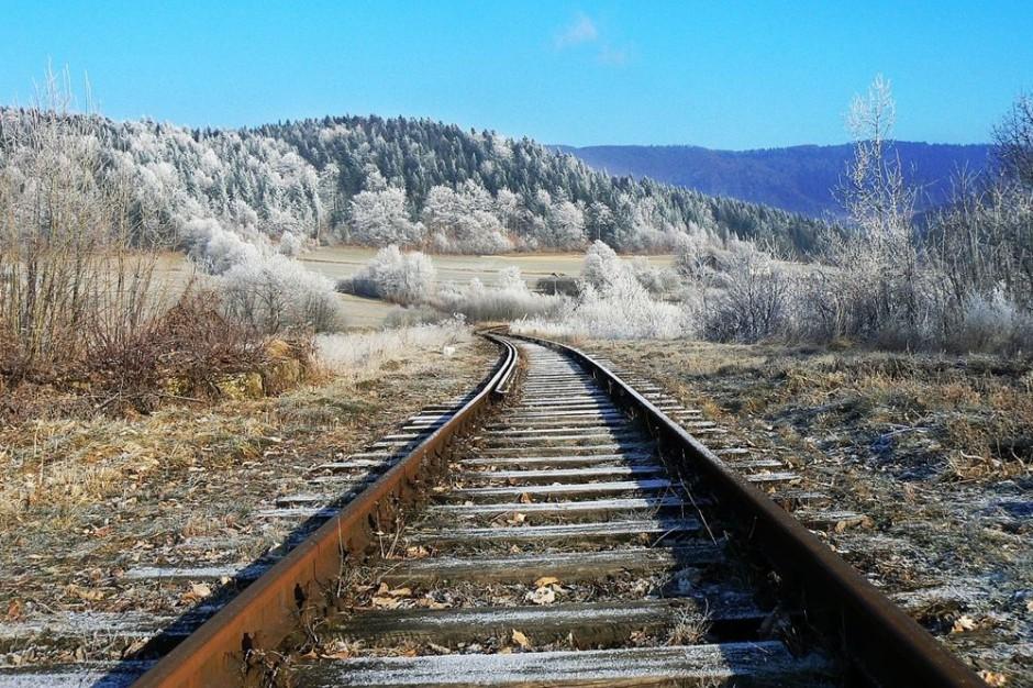 Pociągiem do Zakopanego na święta i sylwestra. Koleje Małopolskie uruchomią specjalne kursy