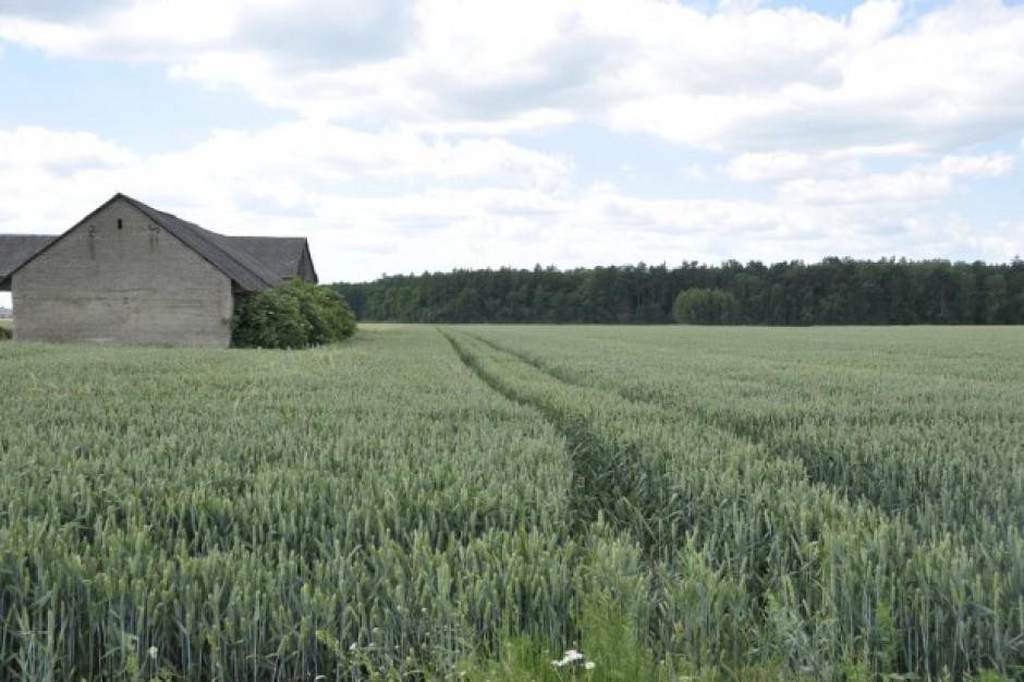 Częstochowa. Nowa placówka Krajowego Ośrodka Wsparcia Rolnictwa