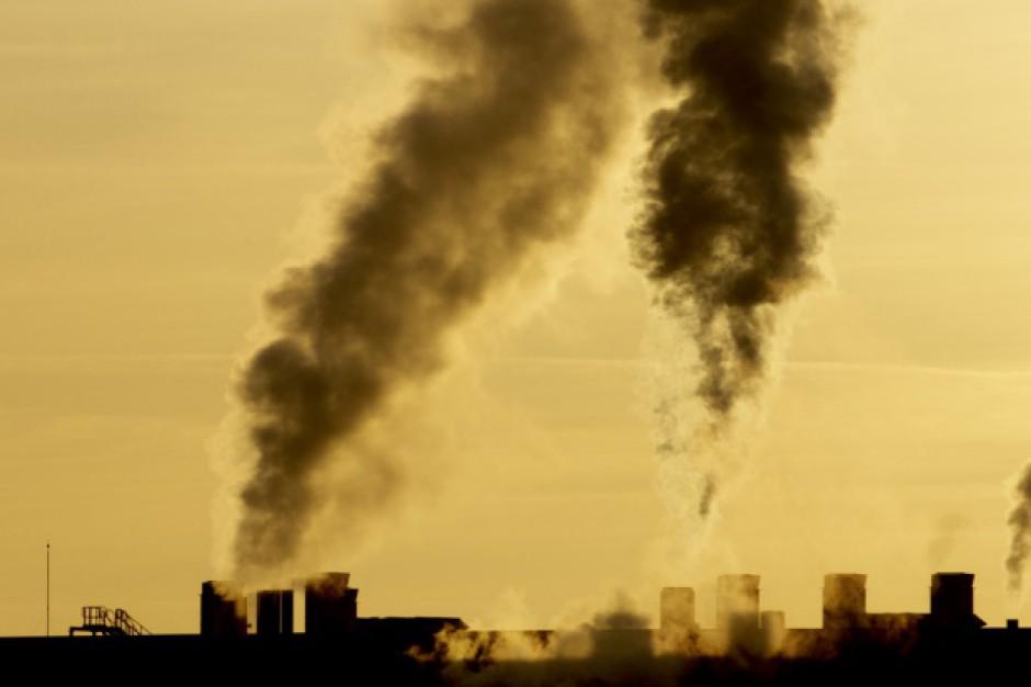 Ustawa antysmogowa: Nowoczesna chce walczyć ze smogiem. Złoży dwa projekty w styczniu