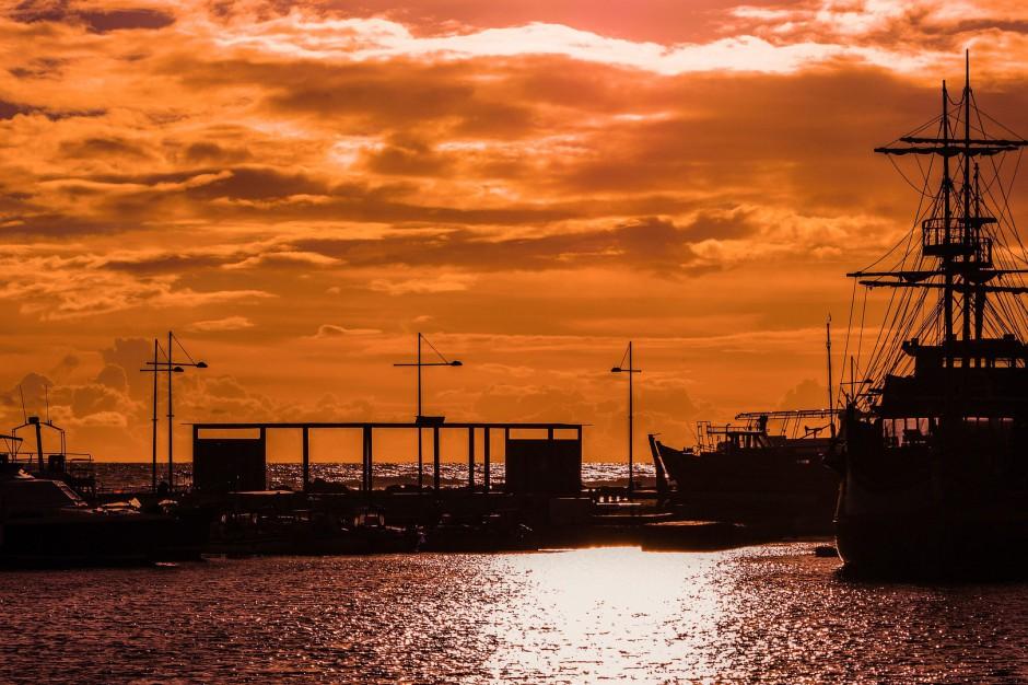 Port Gliwice chce zwiększyć ilość węgla wysyłanego drogą wodną