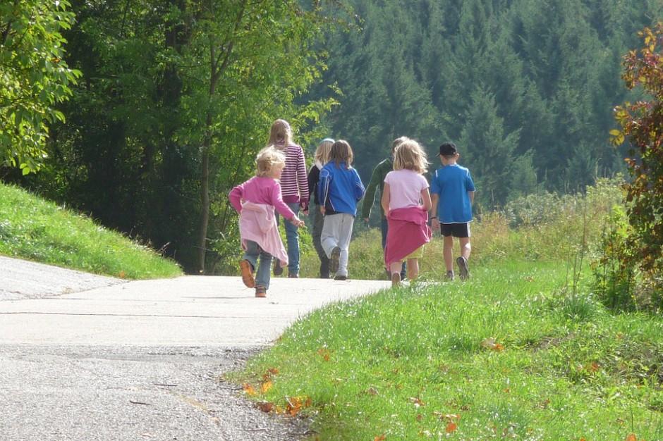 Wycieczki szkolne po nowemu. Ważne rozporządzenie trafiło do konsultacji