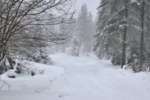 Zawieje i zamiecie śnieżne. Najtrudniej na Podkarpaciu i w Małopolsce