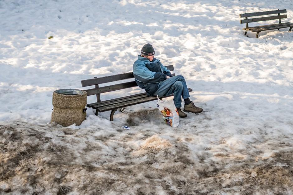 Na Śląsku ruszyła infolinia dla bezdomnych