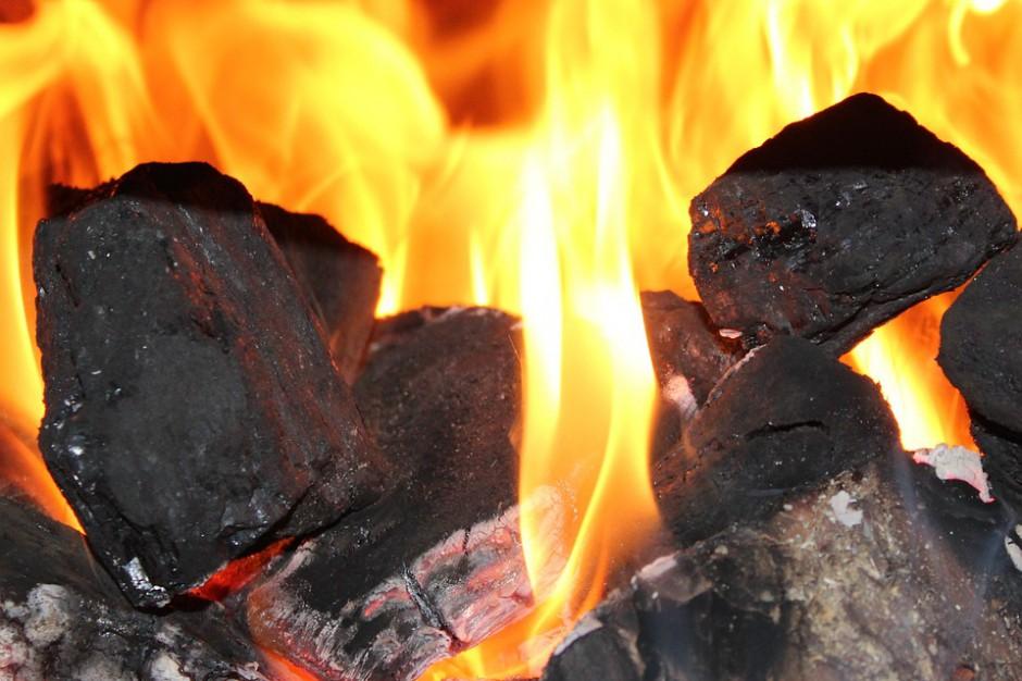 Gdańsk. Straż Miejska sprawdzi, czym się pali w piecach