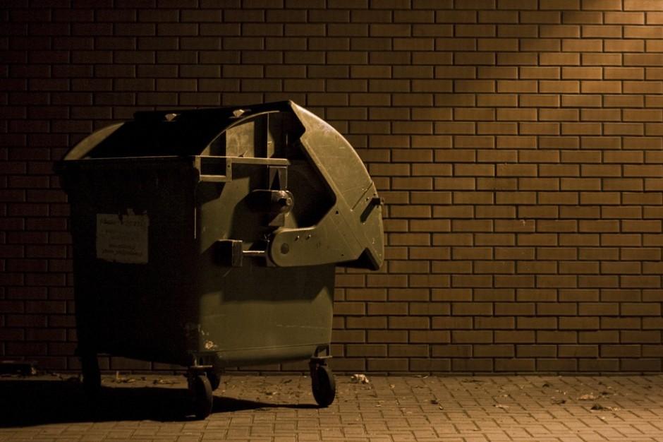 Nowe oznakowania pojemników na odpady: Na razie gminy same zdecydują