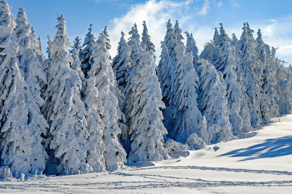 Podkarpackie: Atak zimy. Mieszkańcy bez prądu po opadach śniegu