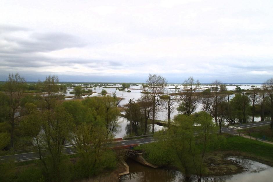 """Światowy Dzień Mokradeł: Park Narodowy """"Ujście Warty"""" świętuje"""