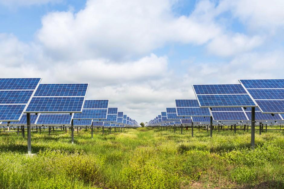Słubice, Ośno Lubuskie, Cybinka, Rzepin, Górzyca utworzyły komunalny klaster energii odnawialnej