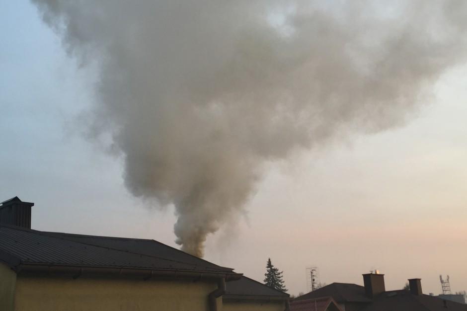 """PAS chce zmiany progu alarmowania o smogu. """"Ludzie muszą być ostrzegani"""""""