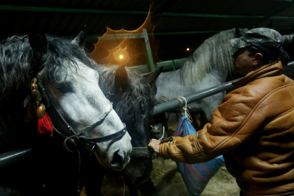 Jarmark konny w Skaryszewie. Po decyzji burmistrza handel końmi na rzeź będzie trudniejszy