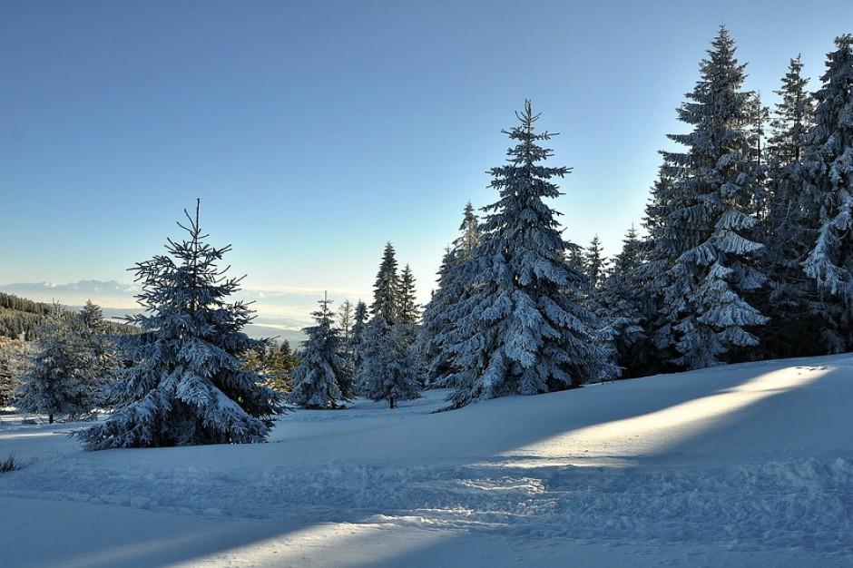 Małopolskie: nowe szlaki turystyczne wokół najwyższej góry Beskidu Wyspowego